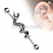 316L surgical Steel Industrial Barbells with Snake