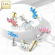 14K Gold Threadless Labret/Flat Back Stud with 5-Marquise Opal FanTop