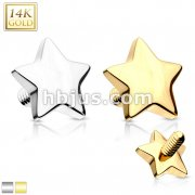 14 Karat Solid Gold 4mm Star Dermal Top Internally Threaded