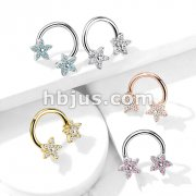 CZ Flower Ends 316L Surgical Steel Circular, Horseshoe