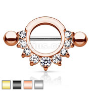 Single Line Pronged Gems 316L Surgical Steel Nipple Ring