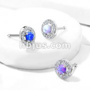 Prong Set Opal Center with CZ Paved Surrounding Top 316L Surgical Steel Nose Bone Stud Rings