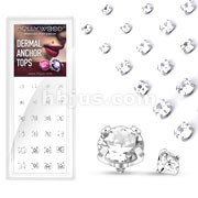 24 Pcs Round Prong Set Gem Dermal Top 316L Surgical Steel Internally Threaded Mix Package