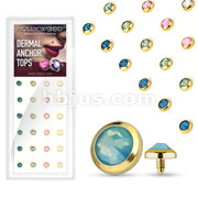 24 Pcs Assorted Gem Set Flat Bottom Dome 316L Surgical Steel Internally Threaded Gold IP Dermal Anchors Package
