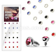 24 Pcs Assorted Press Fit Gem Dermal Top 316L Surgical Steel Internally Threaded Package
