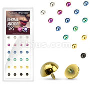 24 Pcs Assorted Mix Dome Dermal Top Titanium IP Over 316L Stainless Steel Internally Threaded PAckage