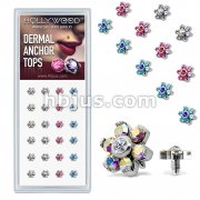 24 Pcs Pre Loaded Box Of Assorted Gem Set Flower 316L Surgical Steel Internally Threaded Dermal Anchor Top Package