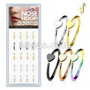20 Pcs Pre Loaded Box of Nose Hoops IP Plated Over 316L Surgical Steel with Hear