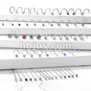 Starter Pack 246 pcs 316L Surgical Steel Nose Screws and Fishtails Pre Assorted Best Sellers