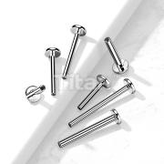 10pc Pack Implant Grade Titanium Internally Threaded Labret, 4mm Base Flat Back Stud Pins