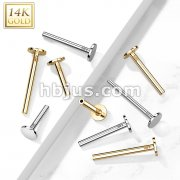 14kt Gold Threadless Push In Labret, Flat Back Stud Pins