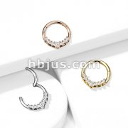 High Quality Precision All 316L Surgical Steel Hinged Segment Hoop Ring with Line CZ Fan
