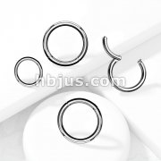High Quality Precision 316L Surgical Steel Hinged Segment HoopRings
