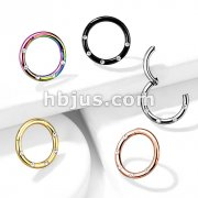 316L Surgical Steel Hinged Segment Hoop Rings with 5 Flush Set Front Facing Petite Crystals