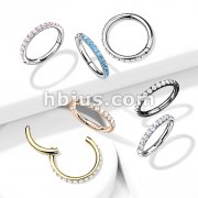 High Quality Precision All 316L Surgical Steel Hinged Segment Hoop Rings with CNC Set CZ Paved