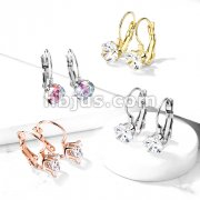 Pair of Prong Set Roun CZ Lever Back Stainless Steel Earrings