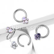 Implant Grade Titanium Captive Bead Rings with Bezel Set CZ Pet Paw