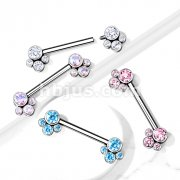 Implant Grade Titanium Nipple Barbells with CZ bezel Set Internally Threaded Pet Paw Ends