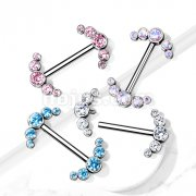 Implant Grade Titanium Nipple Barbells with CZ bezel Set Internally Threaded 5-CZ Curve Ends