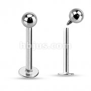 Internally Threaded Grade 23 Solid Titanium Labret, Monroe Studs