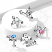 Implant Grade Titanium Internally Threaded Round Opal or CZ Center Cluster Fan with Beaded Ball Top Labret Post