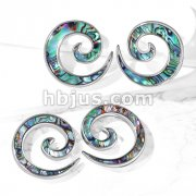 Pair of Abalone Inlaid 316L Stainless Steel Spiral Tapers